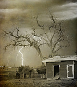 Lightning Bolt Pictures Posters - Country Horses Lightning Storm NE Boulder CO 66V BW ART Poster by James Bo Insogna