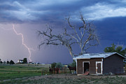 Lightning Bolt Pictures Prints - Country Horses Lightning Storm NE Boulder County CO  63 Print by James Bo Insogna