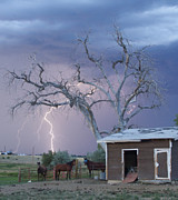 Unusual Lightning Posters - Country Horses Lightning Storm NE Boulder County CO 66V Poster by James Bo Insogna