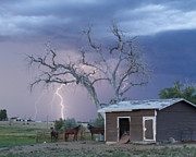 Unusual Lightning Prints - Country Horses Lightning Storm NE Boulder County CO  Crop Print by James Bo Insogna
