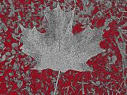 Maple Leaf Digital Art - Country in Turmoil by Cathy  Beharriell