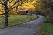 Indiana Autumn Metal Prints - Country Lane - D007732 Metal Print by Daniel Dempster