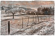 Tennessee Farm Posters - Country Lane Poster by Debra and Dave Vanderlaan