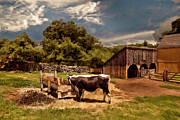 Horse And Cart Photo Metal Prints - Country Life Metal Print by Lourry Legarde