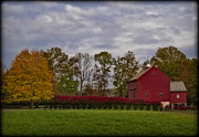 Farming Barns Prints - Country Life Print by Susan Candelario