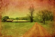Barns Digital Art - Country Living - Bayonet Farm by Angie McKenzie
