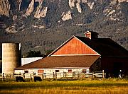 Old Barns Photo Originals - Country living Boulder County by Marilyn Hunt