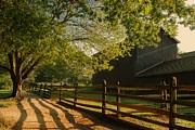 Farm Framed Prints Photos - Country Morning - Holmdel Park by Angie McKenzie