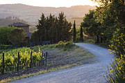 Chianti Hills Photo Framed Prints - Country Road at Sunset Framed Print by Jeremy Woodhouse
