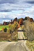 Fall Landscape Print Framed Prints - Country Road Display Framed Print by Deborah Benoit