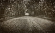 Serene Photo Posters - Country Road Poster by Everet Regal