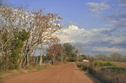 Country Dirt Roads Photo Prints - Country Road Print by Jan Amiss Photography