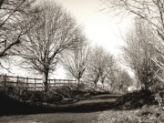 Monochrome Acrylic Prints - Country Road by Roberto Alamino