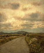 Curvy Road Prints - Country Road with Wildflowers Print by Jill Battaglia