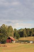 Diane Merkle - Country Scene