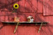 Bird House Prints - Country Still Life II Print by Tom Mc Nemar