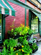 Vermont Country Store Prints - Country Store Print by Susan Savad