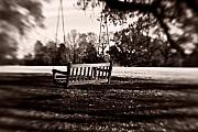 Duotone Photos - Country Swing by Scott Pellegrin