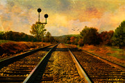 Train Tracks Framed Prints - Country Tracks Framed Print by Kathy Jennings
