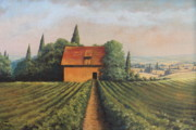 Shed Painting Posters - Country Vineyard  Poster by Diana Miller
