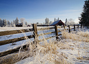 Country Scene Framed Prints - Country Winter Framed Print by Idaho Scenic Images Linda Lantzy