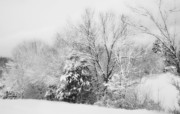 Snow Scene Photos - Country Winter by Kathy Jennings