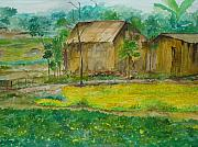 Anisha Bordoloi - Countryside in Dooars
