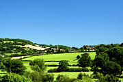 Y120831 Art - Countryside Near Bathampton, Somerset by Graham Bell