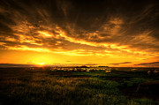 Grassy Hill Posters - Countryside Sunset Poster by Svetlana Sewell