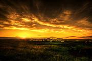 Svetlana Sewell - Countryside Sunset