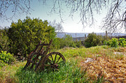 Wagon Wheel Metal Prints - Countryside Wagon Metal Print by Carlos Caetano