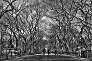 Central Park Photos - Couple at Literary Walk Black and White by Randy Aveille
