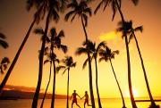 Athletic Sports Art Posters - Couple Silhouette - Tropical Poster by Dana Edmunds - Printscapes