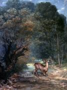 Hunted Photos - Courbet: Hunted Deer, 1866 by Granger
