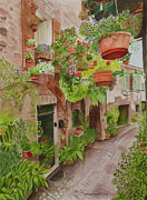 Hanging Baskets Posters - Courtyard Poster by C Wilton Simmons Jr