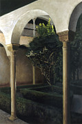 Granada Paintings - Courtyard Garden by Rohan Lowe