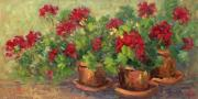 Red Geraniums Framed Prints - Courtyard Geraniums 15 x 30 Framed Print by Yvette Sturgis