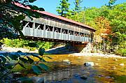 Lucia Vicari - Covered Bridge