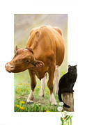 Dandelion Paintings - Cow and Cat by Marissa Oosterlee