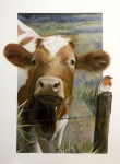 Flowerfield Paintings - Cow and Robin by Marissa Oosterlee