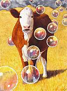 Cow Framed Prints - Cow Bubbles Framed Print by Catherine G McElroy