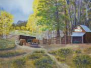 James Geddes - Cow Camp