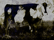 Cow Digital Art Originals - Cow- FFPN by Peter Szabo