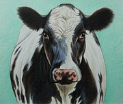 Agriculture Drawings - Cow by Lucy Deane