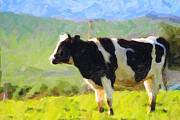 Cow On A Hill Print by Wingsdomain Art and Photography