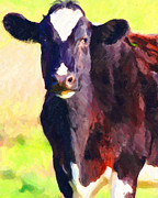 Pasture Digital Art Posters - Cow Stare 2 . Photoart Poster by Wingsdomain Art and Photography
