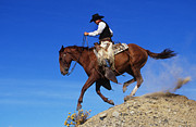 Cowboy Print by George D Lepp and Photo Researchers