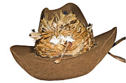 Susan Leggett Art - Cowboy Hat with Feathers by Susan Leggett