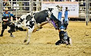 Bull Riders Photos - Cowboy Headstand by Lynda Dawson-Youngclaus