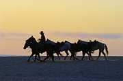Cowboy Photos Prints - Cowboy Silhouette Print by John  Greaves